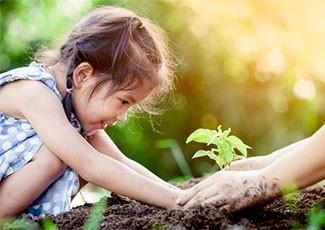 Educação Ambiental e sua Proposta Pedagógica